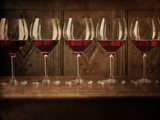 Glasses of Red Wine in a Row Photographic Print by Steve Lupton