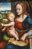 Painting Titled Madonna of the Cherries ,Bristol Museum and Art Gallery,Bristol Photographic Print by Steven Vidler