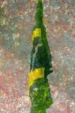 Brasil Impressão fotográfica por André Burian