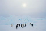 Penguins by Ice Formation Photographic Print by  DLILLC