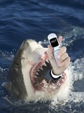 Man Messaging for Help from Shark's Mouth Photographic Print by  DLILLC