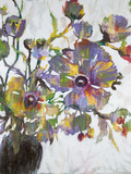Vivid Poppies Print by Liz Jardine
