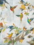 Aerial Dance Kunst av Liz Jardine