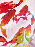 Koi Pond Posters by Liz Jardine