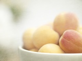 Apricots in a White Bowl Still Life Photographic Print by Steve Lupton