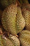 Durians for Sale at Market Photographic Print by Macduff Everton