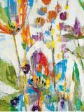 Lily Pond Park Print by Liz Jardine