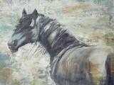 On The Wind Prints by Liz Jardine