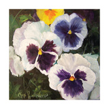 Pansies Print by Cheri Wollenberg