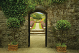 Garden Arch Photographic Print by Dennis Frates