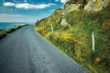 Seaside Road Photographic Print by Dennis Frates