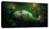 Aadyasha, Gallery-Wrapped Canvas Stretched Canvas Print by Philip Straub
