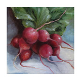 Cluster of Radishes 2011 Premium Giclee Print by Cheri Wollenberg