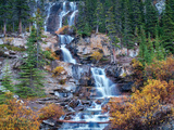 Fall Falls Print by Dennis Frates