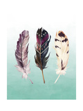 Feathers on Teal Art by Tara Moss