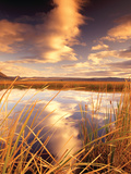 Golden Pond Prints by Dennis Frates