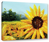 Warmth Of The Sun, Gallery-Wrapped Canvas Gallery Wrapped Canvas by Meaghan Troup