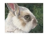 White Rabbit Prints by Cheri Wollenberg