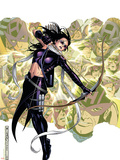 Young Avengers Presents No.6 Cover: Hawkeye Plastic Sign by Jim Cheung