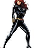 Black Widow Plastic Sign