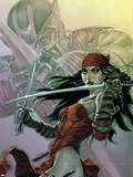 Dark Reign: Elektra No.3 Cover: Elektra Wall Decal by Lee Bermejo