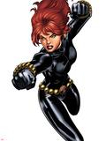 Black Widow Jumping Plastic Sign