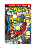 Daredevil No.102 Cover: Stiltman, Black Widow and Daredevil Plastic Sign by Syd Shores