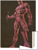 The Official Handbook Of The Marvel Universe Group: Daredevil Posters by David Finch