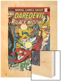 Daredevil No.102 Cover: Stiltman, Black Widow and Daredevil Wood Print by Syd Shores