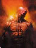 Shadowland: After The Fall No.1 Cover: Daredevil Standing Plastic Sign by David Finch