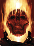 Ghost Rider No.23 Cover: Ghost Rider Plastic Sign