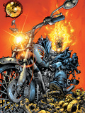 Ghost Rider V3 No.1 Cover: Ghost Rider Wall Decal by Trent Kaniuga