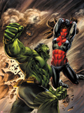 Incredible Hulks No.627 Cover: Hulk and Red She-Hulk Fighting Plastic Sign by Doug Braithwaite