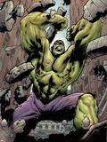 Hulk: Destruction No.1 Cover: Hulk Wall Decal by Jim Muniz