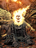 Ghost Rider No.18 Cover: Ghost Rider Plastic Sign by Tony Moore