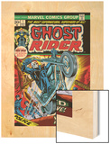 Ghost Rider No.1 Cover: Ghost Rider Wood Print by Tom Sutton