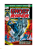 Ghost Rider No.1 Cover: Ghost Rider Wall Decal by Tom Sutton