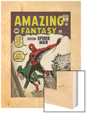 Marvel Comics Retro: Amazing Fantasy Comic Book Cover No.15, Introducing Spider Man (aged) Poster