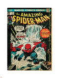 Marvel Comics Retro: The Amazing Spider-Man Comic Book Cover No.151, Flooding (aged) Plastic Sign