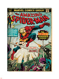 Marvel Comics Retro: The Amazing Spider-Man Comic Book Cover No.153 (aged) Plastic Sign
