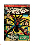 Marvel Comics Retro: The Amazing Spider-Man Comic Book Cover No.135, Return of the Punisher! (aged) Plastic Sign