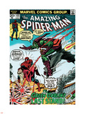 Marvel Comics Retro: The Amazing Spider-Man Comic Book Cover No.122, the Green Goblin's Last Stand! Plastic Sign