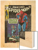 Marvel Comics Retro: The Amazing Spider-Man Comic Book Cover No.75, Death Without Warning! (aged) Wood Print