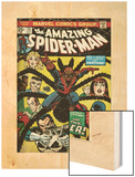 Marvel Comics Retro: The Amazing Spider-Man Comic Book Cover No.135, Return of the Punisher! (aged) Poster