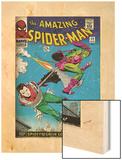 Marvel Comics Retro: The Amazing Spider-Man Comic Book Cover No.39, Green Goblin (aged) Posters