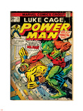 Marvel Comics Retro: Luke Cage, Power Man Comic Book Cover No.29, Fighting Mr. Fish (aged) Plastic Sign