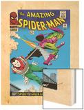 Marvel Comics Retro: The Amazing Spider-Man Comic Book Cover No.39, Green Goblin Posters