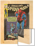 Marvel Comics Retro: The Amazing Spider-Man Comic Book Cover No.75, Death Without Warning! Wood Print