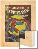 Marvel Comics Retro: The Amazing Spider-Man Comic Book Cover No.70, Wanted! (aged) Print