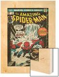 Marvel Comics Retro: The Amazing Spider-Man Comic Book Cover No.151, Flooding (aged) Wood Print